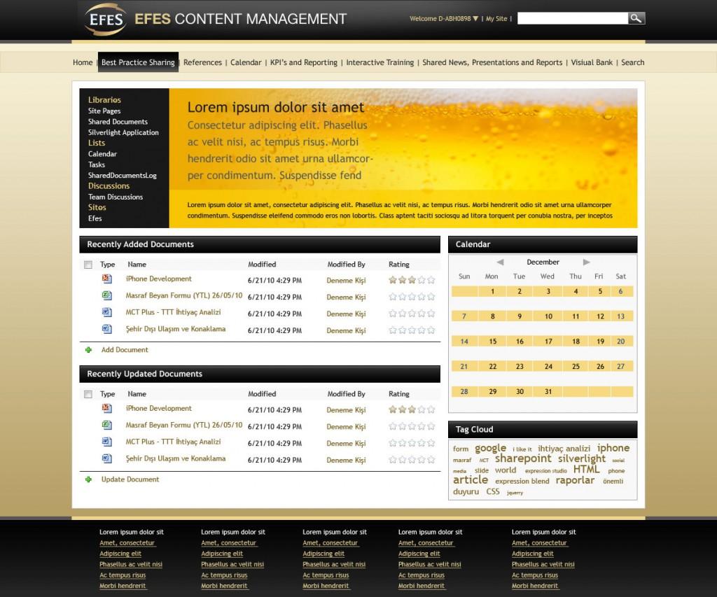 Efes-Content-Management